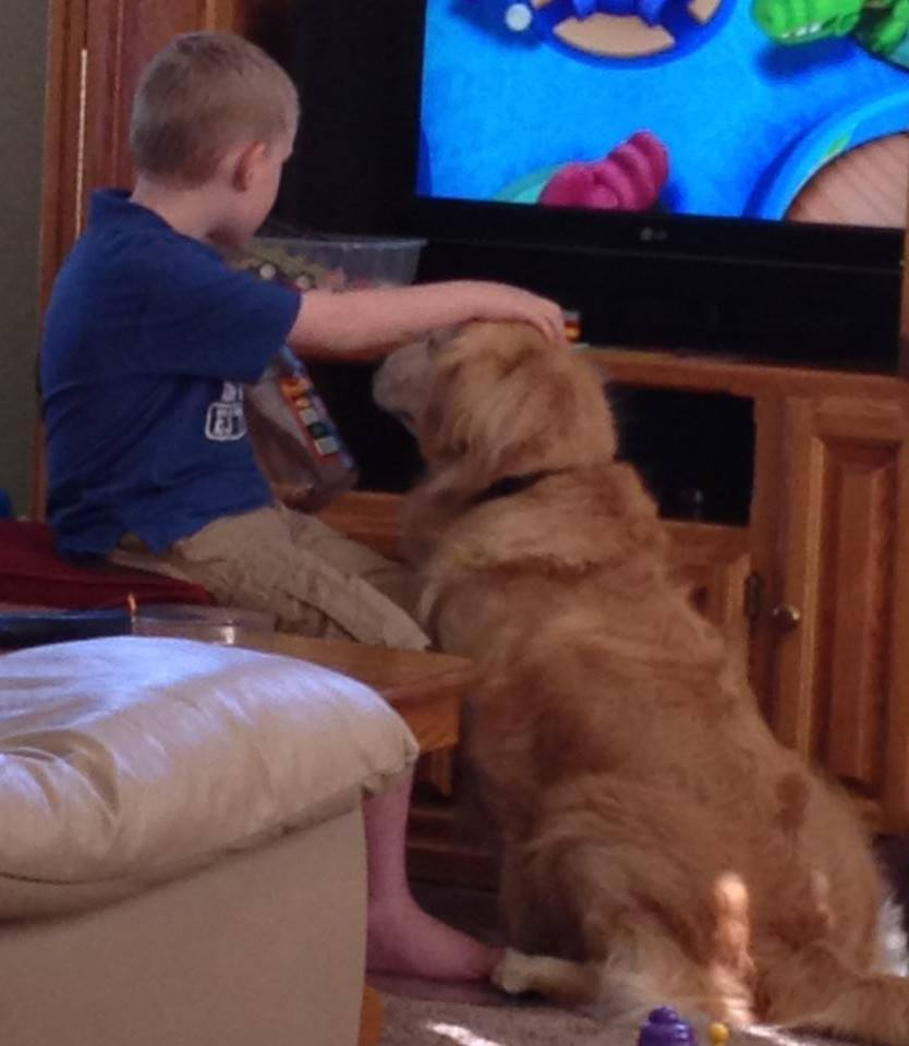 Autism_service_dog_at_home.jpg