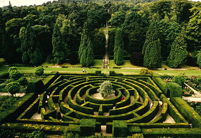 maze garden 3.jpg