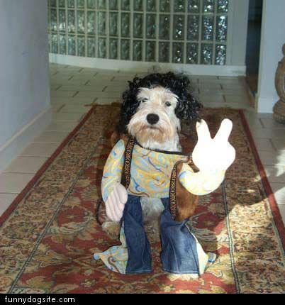 Peace_Out_Dog.jpg