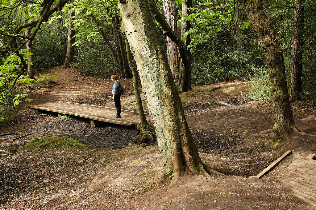 Sutton_Park_Walk.jpg