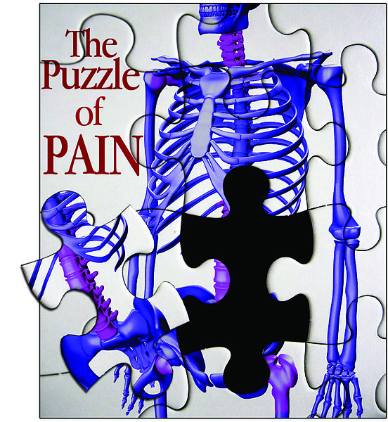The_Puzzle_of_Pain.jpg